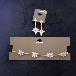 Nwt Express choker and matching earrings